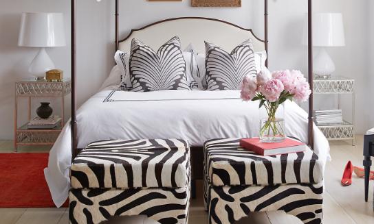 candemir-ottoman-zebra